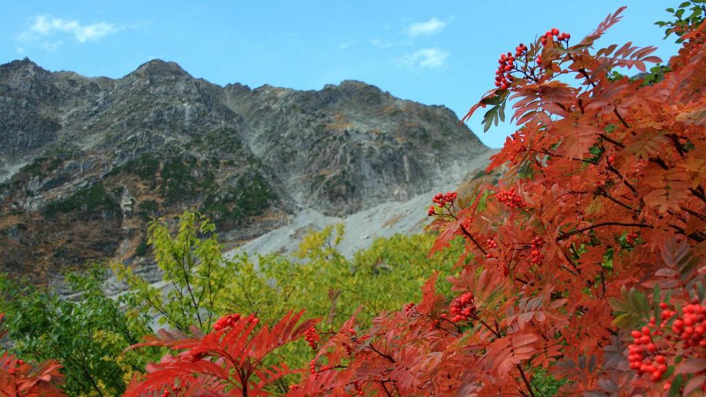 真っ赤なナナカマドと穂高岳