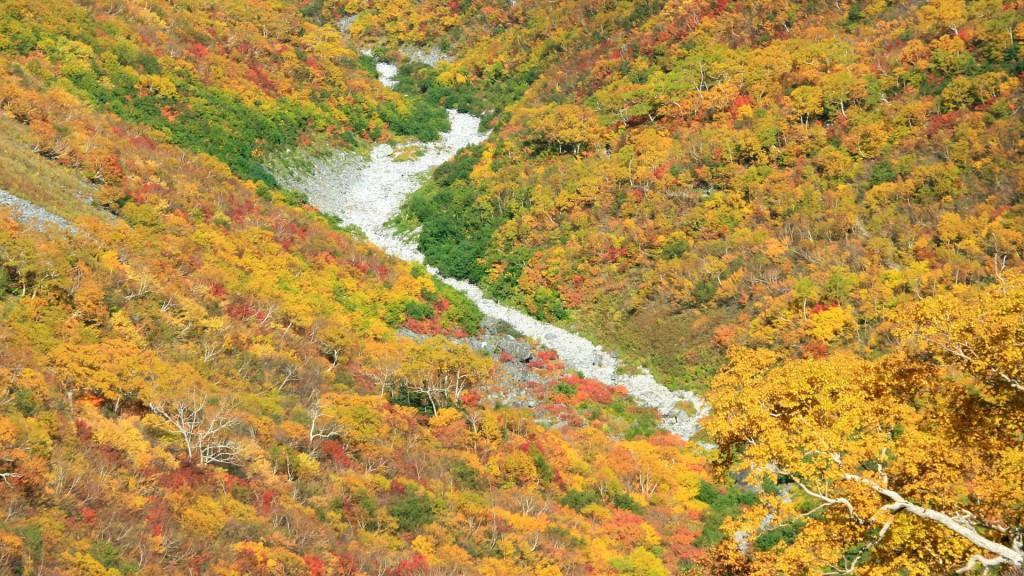 秋色に染まる谷