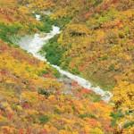 秋色に染まる谷(フルHD1920x1080ワイド壁紙)