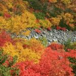 錦秋の谷(フルHD1920x1080ワイド壁紙)