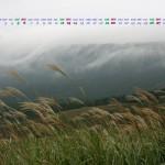 ススキと滝雲(1920x1080ワイドカレンダー壁紙)