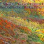 雨飾山の紅葉(フルhd1920x1080・2013年10月11月カレンダー壁紙)