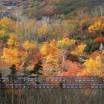 乗鞍岳の紅葉(2013年10月11月1920x1080カレンダー壁紙)