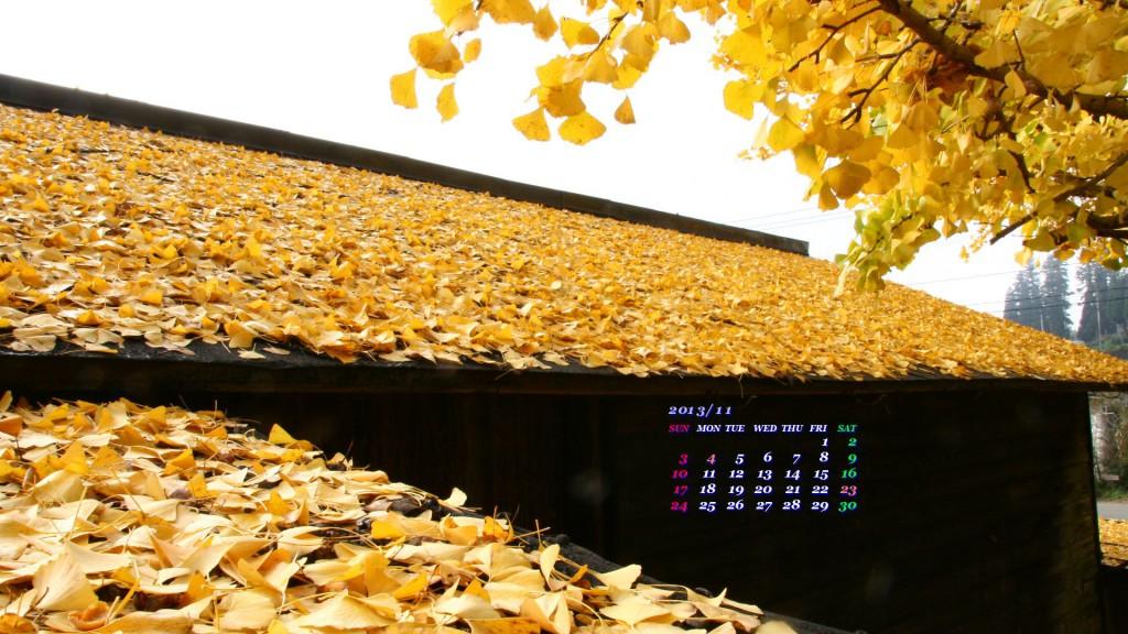 屋根を黄色に染めるイチョウの落ち葉