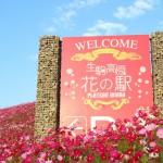 生駒高原花の駅(フルHD1920x1080ワイド壁紙)