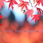 秋もよう(2013年11月カレンダー壁紙)
