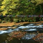 秋の菊池渓谷(2013年11月カレンダー壁紙)