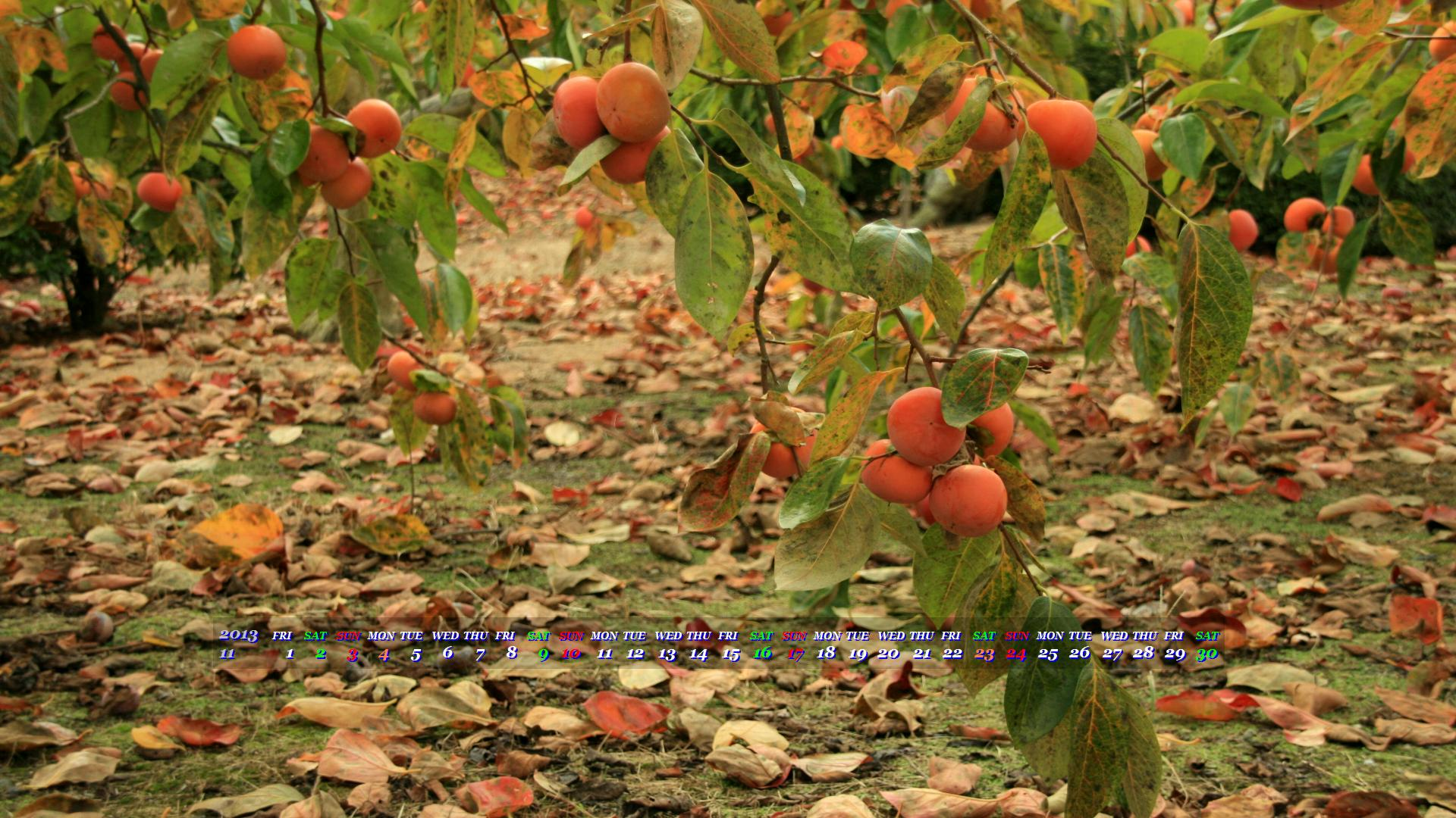 柿実る秋 2013年11月19x1080ワイド壁紙 カレンダー壁紙館 昴 無料ワイド