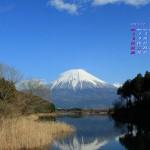 富士山(田貫湖から)2013年12月カレンダー壁紙