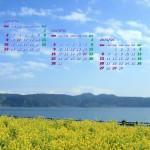 池田湖の菜の花(2014年2月カレンダー壁紙・1920×1080)