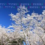 桜(2014年4月5月無料カレンダー壁紙)