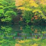 水面に写る紅葉