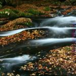 秋の渓谷(菊池渓谷)