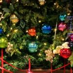 カレンダー壁紙/クリスマス・イルミネーション