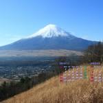 カレンダー壁紙/高座山から富士山をのぞむ