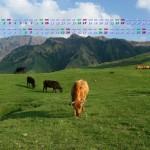 阿蘇高原の放牧