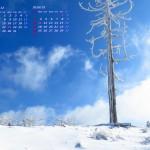 冬晴れの日(英彦山)