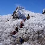 霧氷登山・雲仙岳