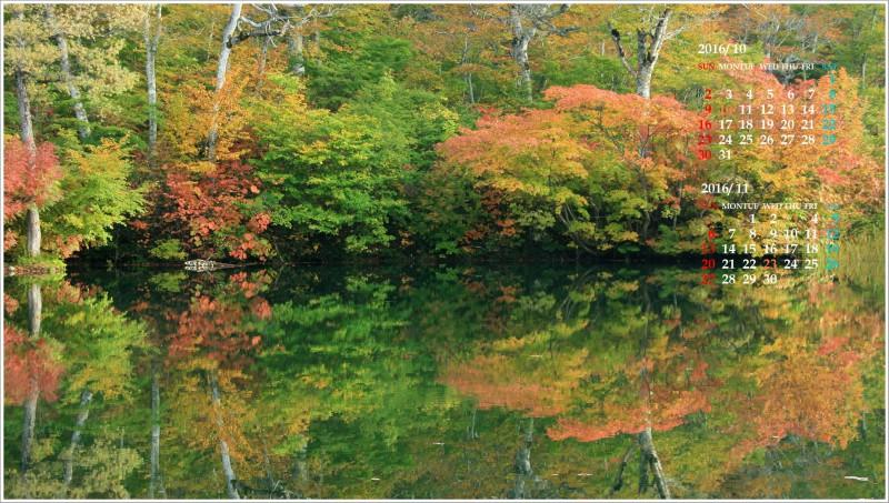 水面に映る紅葉の木々(鎌池)