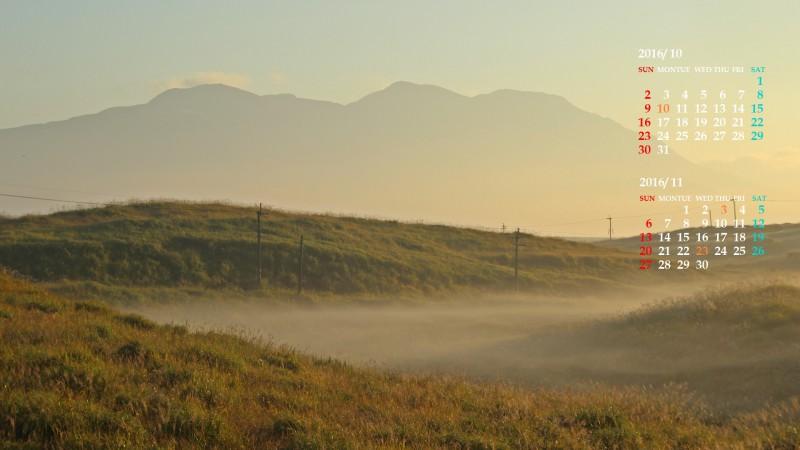 朝霧立つ草原