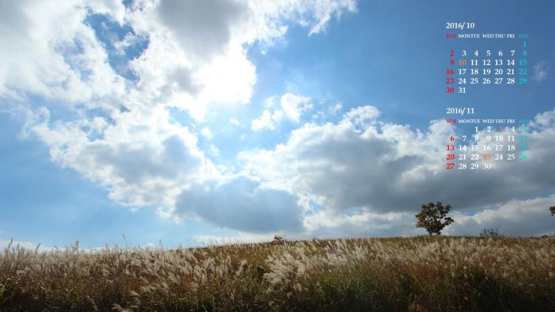 草原の秋(熊本・阿蘇)