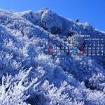 霧氷の山(雲仙普賢岳)