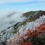紅葉と霧氷の谷川岳