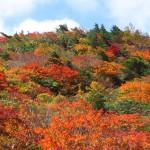 紅葉真っ盛りの安達太良山