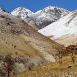 淡雪の由布岳