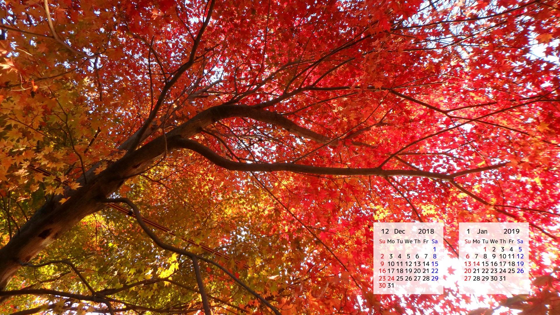 18年12月カレンダー壁紙 カレンダー壁紙館 昴 無料ワイド